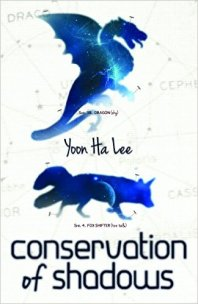 conservation-of-shadows